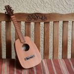 Acoustic, electric, keystone, tenor ukulele for Iriguchi Ukuleles
