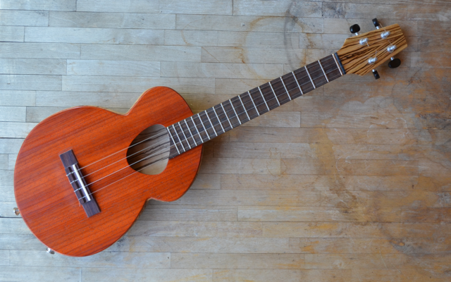 <strong>Savanna</strong> – Semi-hollow, HardBody, Flattop, FatBottom, Electric, Tenor Ukulele in Zebrawood & Padauk