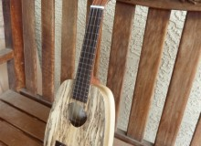 <strong>Horizon</strong> – Keystone concert in spalted Tamarind