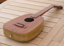 <strong>Evolution</strong> – Acoustic Keystone Ideale™ in Redwood & Poplar
