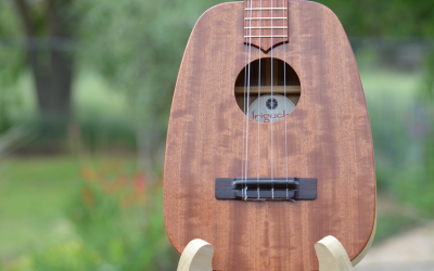 You can win this ukulele at the 2015 Reno Ukulele Festival!