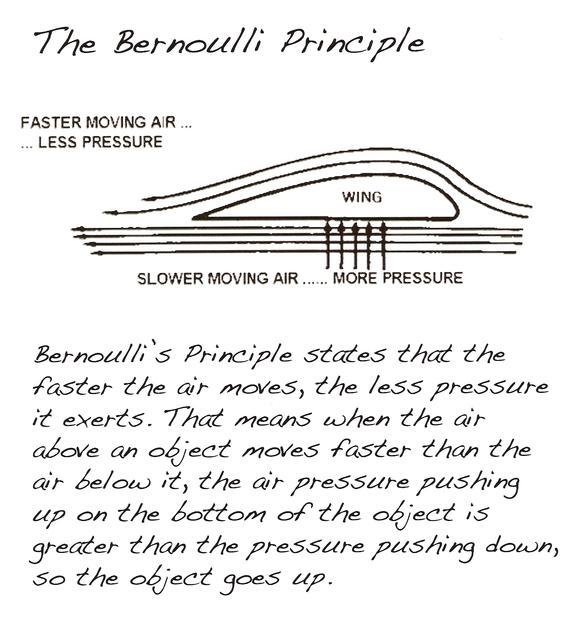 The_Bernoulli_Principle